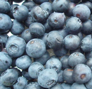 save money on blueberries